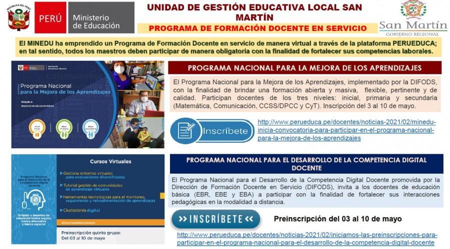 PROGRAMA DE FORMACIÓN DOCENTE EN SERVICIO